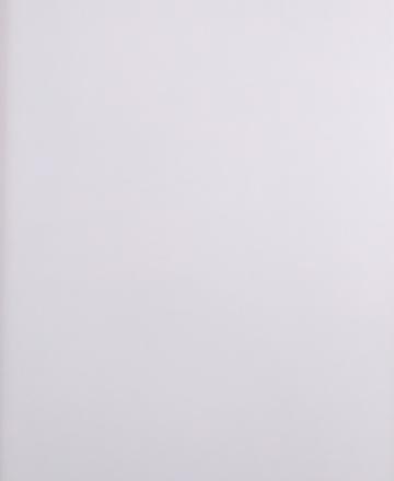 Artica blanco 30x60 pw